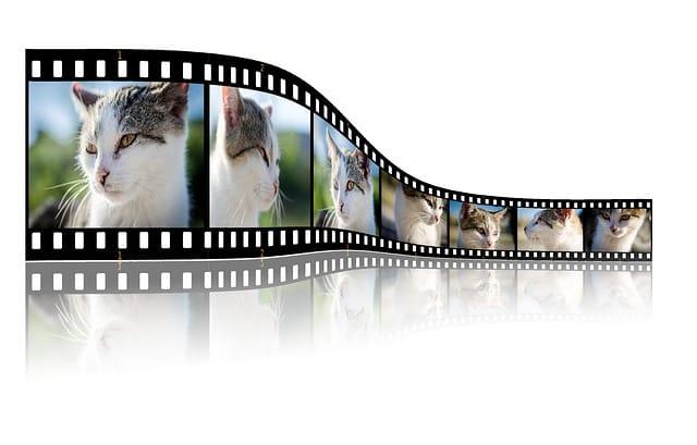 convertidores online de video